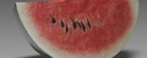 Wassermelone 1